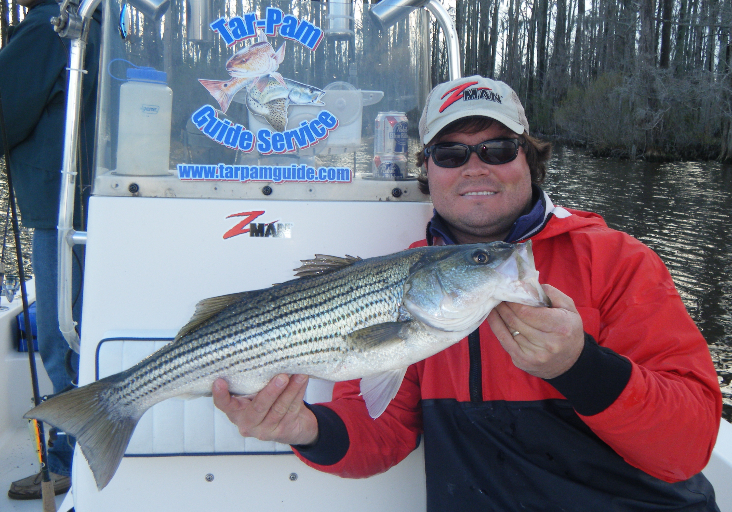 capt-richard-andrews-with-a-25-inch-pamlico-river-topwater-striper-caught-near-downtown-washington-copy