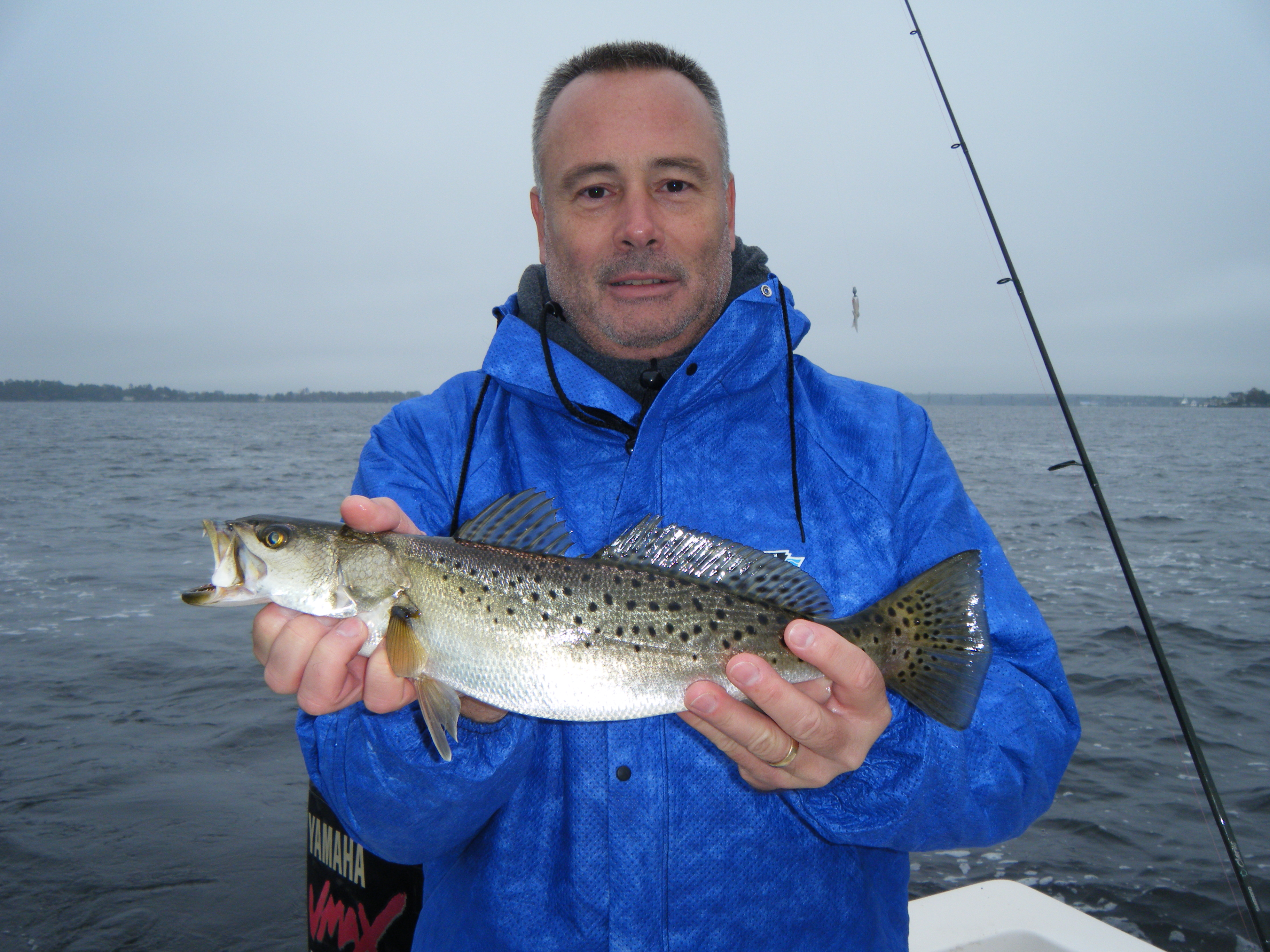 Tar pam guide service pamlico and pungo river fishing for Striped bass fishing reports